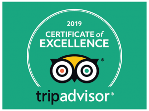 Certificate of Excellence 2019 EXIT/SALIDA Escape room